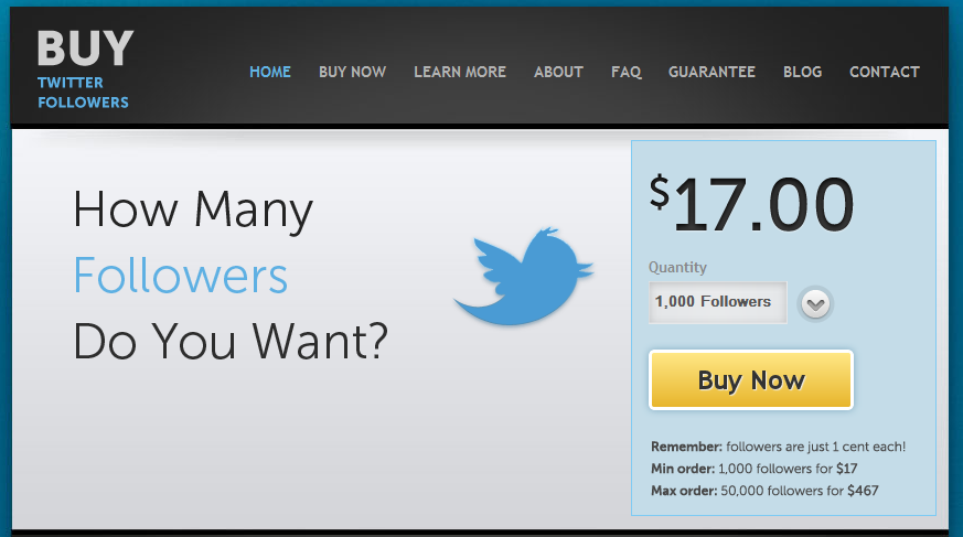 e7594d3d1d31 Buying Social Media Followers  to do or not
